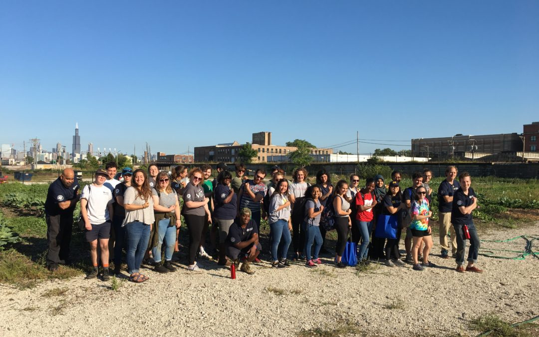 Farming in the City: A Day of Service in Honor of 9/11