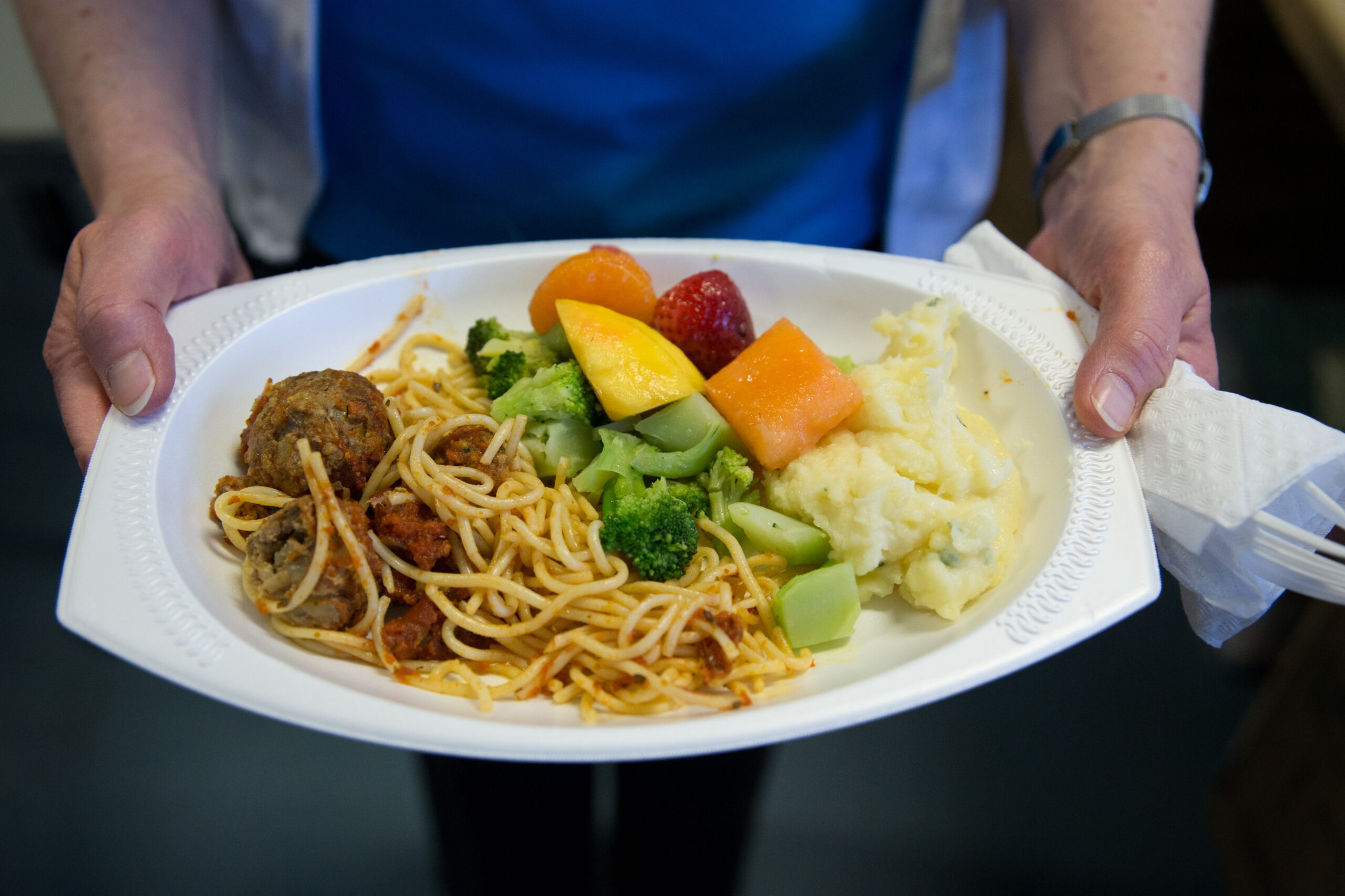 Paper plate with fruit, broccoli, and spaghetti and meatballs